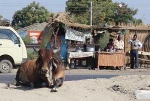 FB 01 Ahmedabad IMG_1468