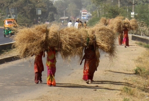 FB 06 Pratapura IMG_2162