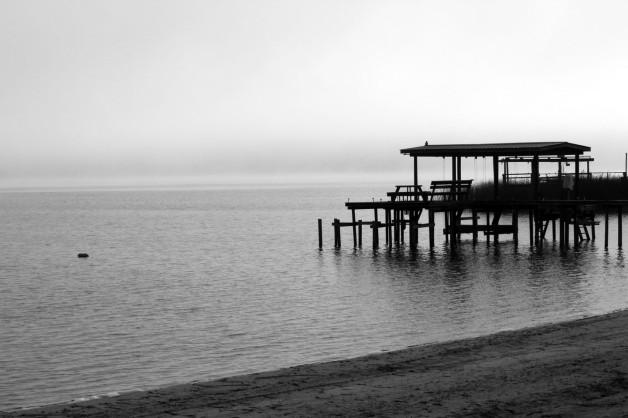 fog BW IMG_0254