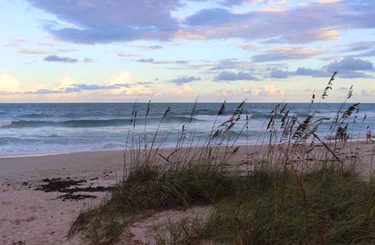 Beach IMG_0472