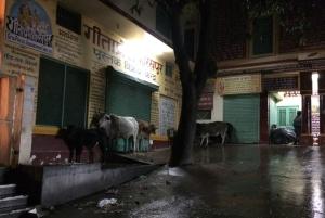 Rishikesh IMG_1339