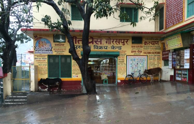 Rishikesh IMG_1394