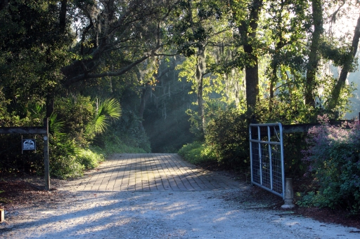 Beautiful morning sun creates a a mystical feel to this driveway entrance. Oviedo, FL