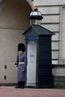 Guarding perhaps one of the most recognizable gates in the world. Buckingham Palace, London, England.