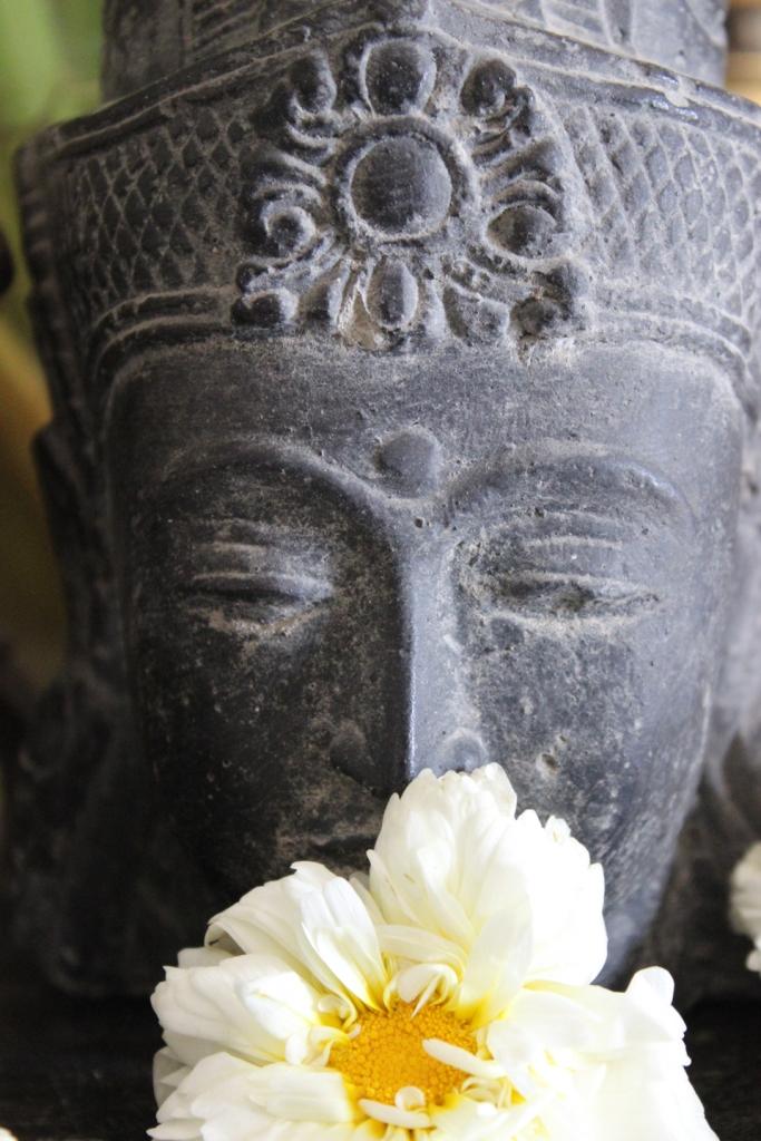 buddha flower IMG_4316