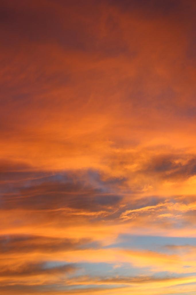 sunrise IMG_1946