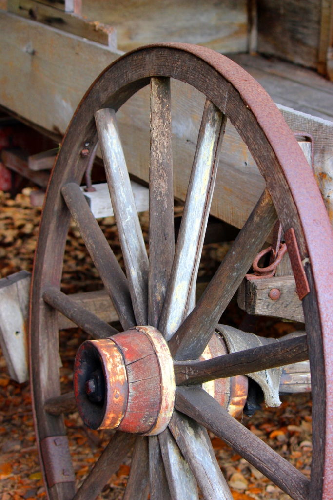 wagon wheel IMG_0746