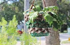 This is the kind of town where people crochet coozies for their hanging plants. How can you not love that?!