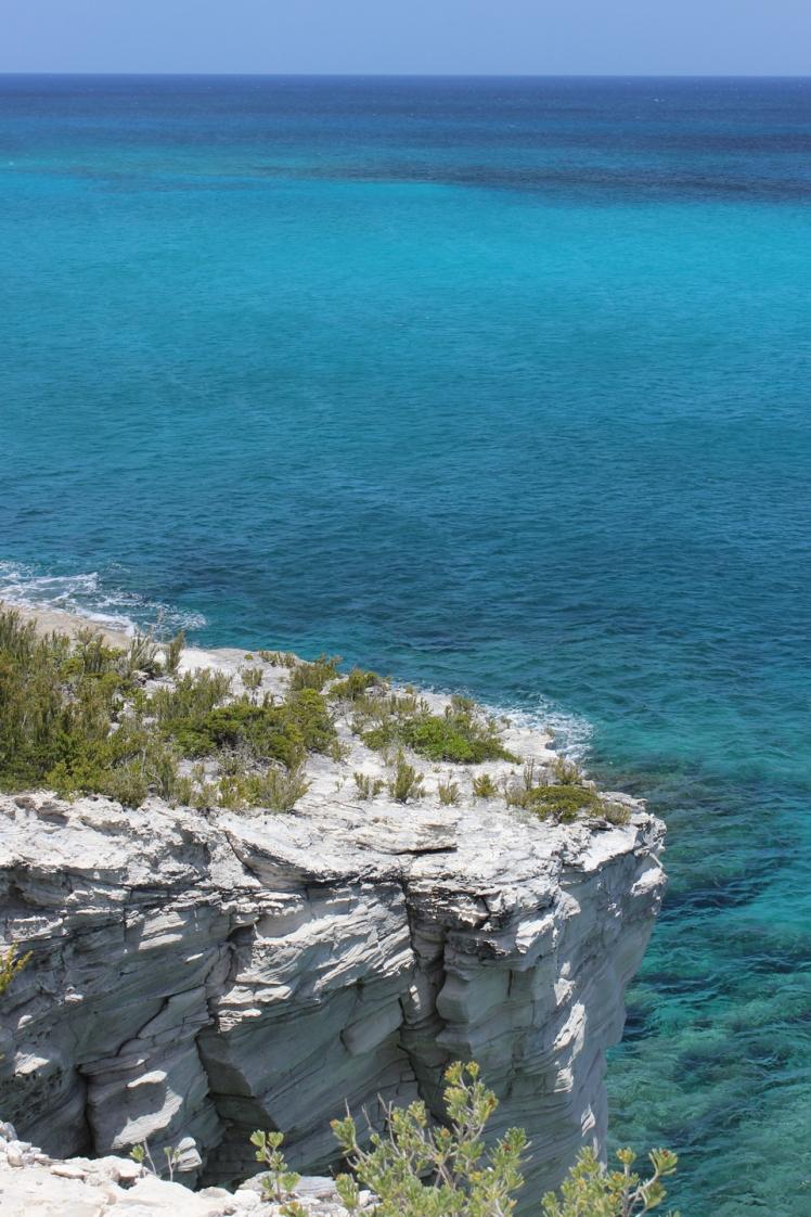 Bahamas 03 IMG_8578