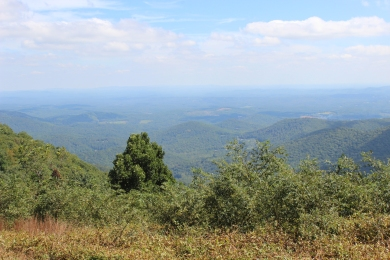 Blue Ridge Pkwy IMG_0297