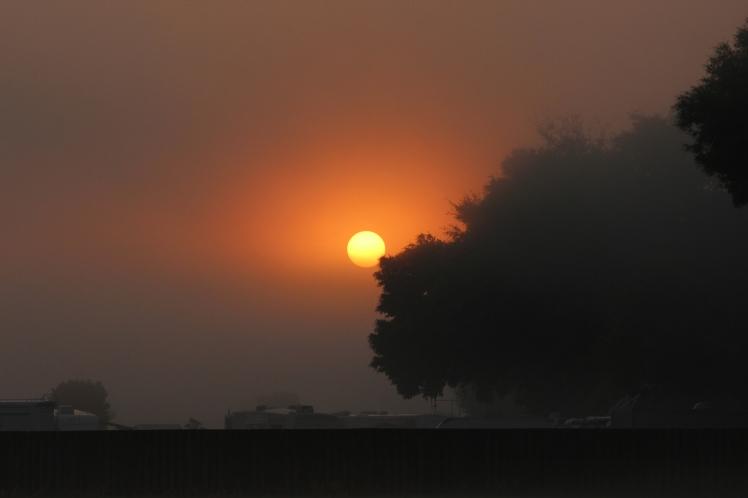 sunrise IMG_3365