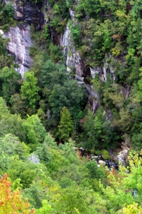 Tallulah Gorge IMG_0191