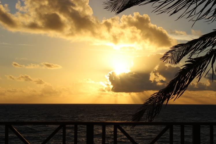 Bahamas 04 IMG_8667