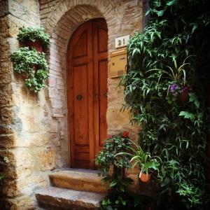 Volterra IMG_8755