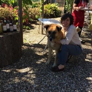 Vineyard IMG_9152